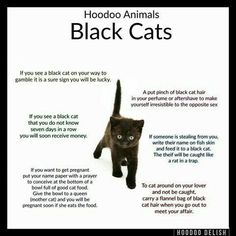 Hoodoo, not to be confused with Voodoo, is a type of folk magic based mostly on African rituals, customs and lore. Hoodoo Spells, Magick Spells, Witchcraft, Gypsy Spells, Wiccan Spell Book, Wiccan Witch, Spell Books, Voodoo Hoodoo, Book Of Shadows