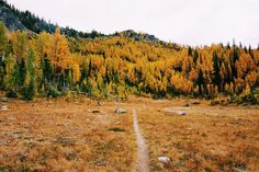 Hiking To-Do List: Carne Mountain, Phelps Creek, Washington's Central Cascades. Great fall color with larches.