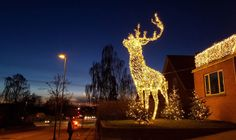 arge-scale festive cheer puts a smile L on people's faces in Ringsted. Light Art, Denmark, Giraffe, Festive, Cheer, Scale, Destinations, Christmas Decorations, Faces