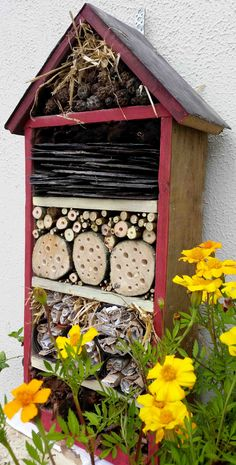 Bug hotels have grown in popularity over recent years but do we need more? Here's three reasons why insects are good for both bugs and humans.