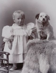 CDV Fine Dressed Toddler Next to A Cute Dog Luxembourg C 1900 | eBay
