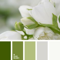Цветовая палитра №3290 in color balance, color palette