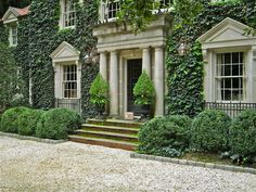 ivy covered home with clipped boxwoods, black iron urns, gravel drive