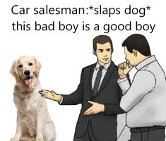 """morges🐧 on Twitter: """"i absolutely love the car salesman meme… """""""
