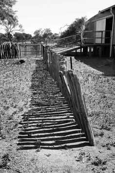 Shearing shed fence Mt Magnet Western Australia Click And Go, Barn Pictures, Fence Gate, Shearing, Our World, Western Australia, Railroad Tracks, Homesteads, Black And White