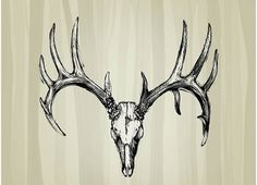 Best Deer Tattoo Designs – Our Top 10