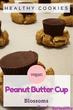 Want an easy, and healthy, peanut butter blossom cookies recipe that kids love and you'll approve of as a mom? This simple vegan recipe will prove itself as the best healthy holiday treats you've had! Dairy Free Recipes, Vegan Recipes Easy, Healthy Vegan Desserts, Healthy Eating, Chocolate Christmas Cookies, Peanut Butter Blossom Cookies, Vegan Peanut Butter, Cookies For Kids, Cookie Recipes