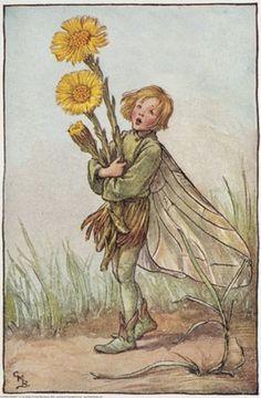 """Vintage print 'The Colt's foot Fairy' by Cicely Mary Barker from """"The Book of the Flower Fairies""""; Poem and Pictures by Cicely Mary Barker, Published by Blackie & Son Limited, London [Flower Fairies - Spring] Cicely Mary Barker, Flower Fairies, Vintage Fairies, Vintage Flowers, Spring Fairy, Kobold, Fairy Pictures, Beautiful Fairies, Fantasy Illustration"""