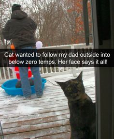 Hilarious Animal Pictures Picdump of The Day 172 Pics Here is a hilarious funny animal picture picdump Most of it consists of cute animals doing funny things. Some funny animal fails. Anyway, check out these 30 funny pics of funny animals. Funny Animal Memes, Cute Funny Animals, Funny Animal Pictures, Funny Memes, Funny Sayings, Cute Animal Humor, Funny Cat Photos, Hilarious Pictures, Memes Humor