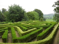 Anniversary Maze, Painswick Rococo Garden, Gloucestershire, England. Via www.geograph.org.uk.