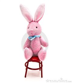 Mini Bunny In Chair - Download From Over 24 Million High Quality Stock Photos, Images, Vectors. Sign up for FREE today. Image: 8471932
