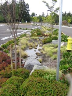 landscape architecture parking lot screening - Google Search