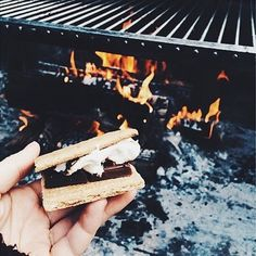 food lovers have s'more fun.