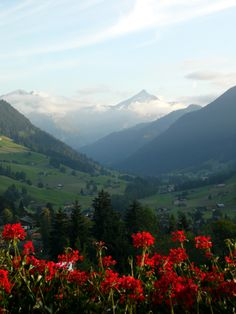 View from the Alpina Hotel, Gstaad, Switzerland, September 2014