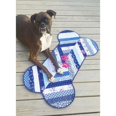 """Close ups, full view, and @iketheboxer loving his personal mini quilt! It's no surprise to most of you how much I love dogs, so my """"unconventional mini quilt"""" featuring @the_tattooed_quilter's Blue Carolina collection for @rileyblakedesigns was an easy decision to fashion into a dog bone! This is jelly strip friendly and super cute if I say so myself!  -- #bluecarolinafabric #bluecarolina #bluecarolinaminiquilt #unconventionalminiquilt #rileyblake #rileyblakedesigns"""