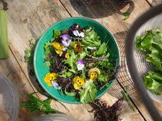 Sarah shows you how what sort of edible flowers she likes to grow and eat at home.
