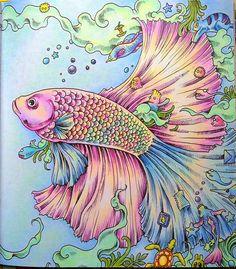 Аниморфозы. Задание 5. Рыбка-петушок. – 6 фотографий