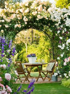 beautiful outdoor dining with climbing roses