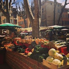 Trees are not yet leafed nevertheless spring is here in #aixenprovence - - - #mademoisellechahnezwedding #mademoisellechahnez #aixmaville #provence #market #placedalbertas #spring