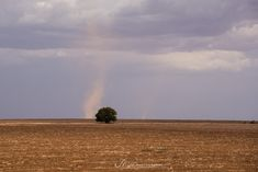 Dust devil, South Africa   Two Tracks Metallica Lyrics, New Adventures, West Coast, South Africa, Landscape Photography, Devil, To Go, Track, Country Roads