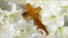 Felicitari de Sfantul Ilie - Sfantul Ilie sa ne lumineze mintea, sufletul si cugetul! Amin.