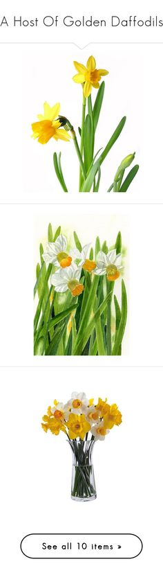 """""""A Host Of Golden Daffodils"""" by karolinewells ❤ liked on Polyvore featuring home, home decor, green home accessories, green home decor, leaf home decor, vases, dartington crystal, dartington crystal vase, stationery and easter card"""