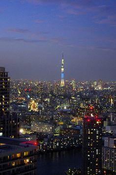 都内屈指の絶景ポイント:東雲のタワーマンション180mからの夕焼け 東京スカイスリー (6)