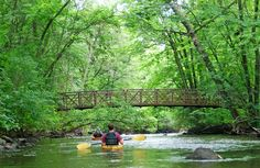 RICE CREEK. If you like to see a metro area from its backside, try Rice Creek from the Rice Creek Chain of Lakes Park Reserve to its entrance into the Mississippi River in Fridley. Rice Creek rats advise that it's best paddled in its sweet spot: Too much water makes passages under culverts dicey, while too little water begets a dragfest. Usually, early spring is the time of sweetness. (Photo courtesy Rice Creek Watershed District)