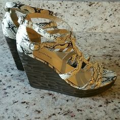 Faux Snakeskin Wedges Gorgeous! Gorgeous! Gorgeous!! Max & Cleo Shoes Wedges