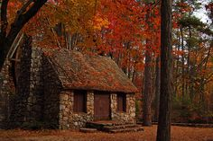 If you are in Rome (Georgia), it is worth it to take a trip up to the Berry College mill, the colors there are so pretty in the fall!