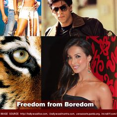 INVIYA® - The New Freedom Fibre is a spandex fiber, manufactured in India. New Freedom, Bollywood Songs, Set You Free, Film Industry, Fashion Quiz, Puzzle, Challenges, Iphone App, Friends