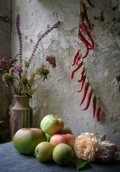 kitchen garden - David Hennessy Photography