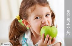 Nutrition and Cognitive Development in Young Children