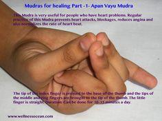 Apan Vayu Mudra for the heart Chakra Meditation, Kundalini Yoga, Pranayama, Qi Gong, Acupuncture, Hand Mudras, Yoga Nidra, Meditation Benefits, Acupressure Points