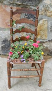 Old chair planter flowers