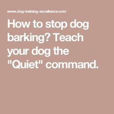 how to teach your dog to eat command