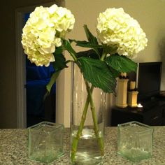 i love kroger on pinterest inexpensive wedding flowers hershey chocolate and outdoor decorations. Black Bedroom Furniture Sets. Home Design Ideas