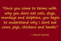 Once you come to terms with why you don't eat cats, dogs, monkeys and dolphins, you begin to understand why I don't eat cows, pigs, chickens and lambs. - Edward Sanchez