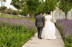 wedding picture Wedding Pictures, Big Day, Wedding Dresses, Fashion, Bride Dresses, Moda, Bridal Gowns, Wedding Dressses, La Mode