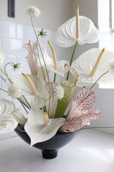 Red Anthuriums - photographed by Sophia Moreno-Bunge for Gardenista Modern Floral Arrangements, Floral Centerpieces, Tall Centerpiece, Wedding Centerpieces, Hotel Flower Arrangements, Ikebana Arrangements, Wedding Tables, Silk Flowers, Beautiful Flowers