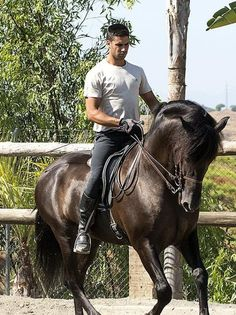 >>Read information on horse boarding. Check the webpage to read more~~~~~~ The web presence is worth checking out. Riding Gear, Horse Riding, Man Horse, Men's Equestrian, Estilo Cowgirl, Andalusian Horse, Dressage Horses, Horses For Sale, Horseback Riding