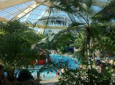 Elveden Forest Center Parcs: subtropical swimming