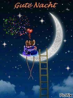 Good Night Meme, Good Night Prayer Quotes, Good Night Messages, Good Morning Saturday, Good Morning Good Night, Day For Night, Good Night Greetings, Good Night Wishes, Good Morning Flowers Gif