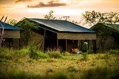 Camping, Tanzania