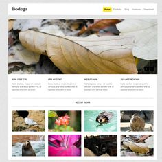 Bodega is a free WordPress theme I've created exclusively for release at WPExplorer.com. The theme features a very minimal design thats perfect for small business and portfolio websites. Included are some cool features such as a homepage slider, custom post types for the portfolio, filterable portfolio page, shortcodes, widget footer and of course the ability to run a regular blog alongside your site.