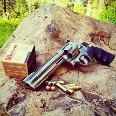 Smith and Wesson 629 .44 Mag.