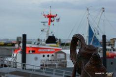 Yachthafen in Wittdün auf #Amrum