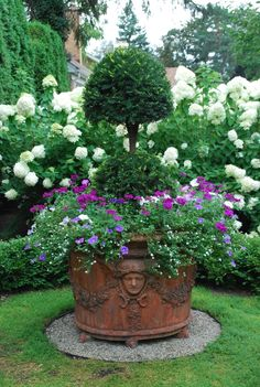 Sheared: Part Two Yews make good topiary subjects, although they do not respond as well to close shearing. Topiary Plants, Topiary Garden, Boxwood Topiary, Topiaries, Boxwood Planters, Outdoor Topiary, Outdoor Planters, Potted Plants, Container Plants