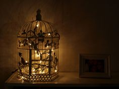 Birdcage - string of white lights - perfect nightlight for children's room.