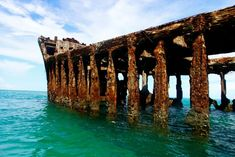 Uncommon Attraction: The Spooky Wreck of the SS Sapona